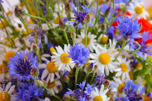 Fototapety, obrazy: Beautiful Bouquet Of Wildflowers, Photographed With A Soft Focused