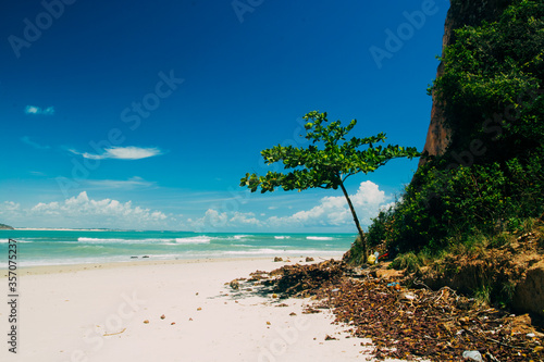 Beach of praia do pipa in the northern state of Natal, posh and exclusive locati Canvas-taulu