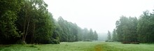 Panorama Of A Field In A Summe...