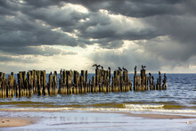 Old Pier & Cormorants