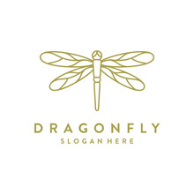 Dragonfly Logo Concept, Beauty...