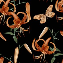 Seamless Floral Pattern With A Branch Of Orange Lily And A Butterfly On A Black Background. Lilium Lancifolium. Tropical Pattern. Stock Vector Illustration.