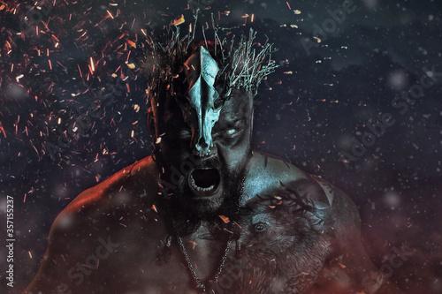 Платно Photo of screaming viking warrior