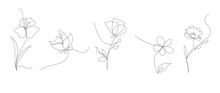 Single Line Art Vector Flower Illustration, Outline Set Of Blooming Flowers