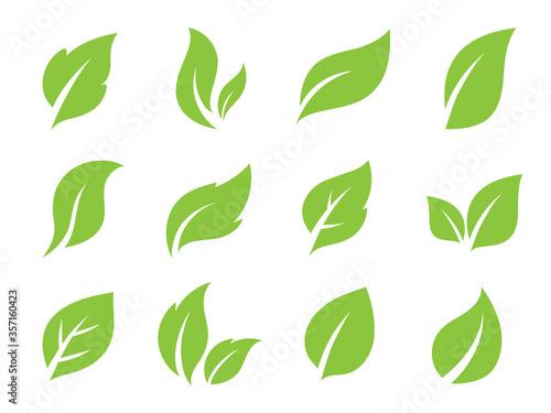 Fototapeta Leaves line vector icon set.  Leaf shapes design for logo and natural beauty design element. Vector illustration. obraz