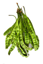 Fresh Sator Beans On White Bac...