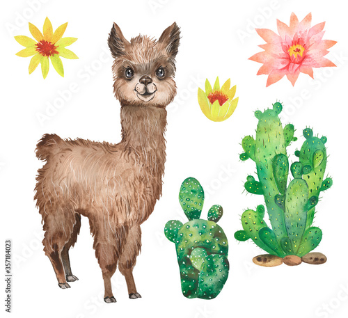 Photo Watercolor set with cute brown llama, cacti, farm animal, flowers