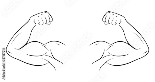 Fototapeta Biceps of a sports person vector fit