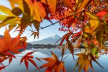 Mount Fuji In Autumn Season, L...