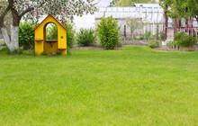 Tree Play House On The Backyar...