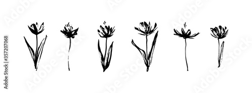 Grunge dirty decorative flowers. Hand drawn black vector floral collection, isolated on white background. Modern ink graphic art, expressive brush strokes