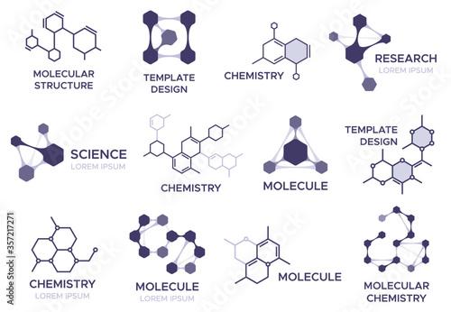 Fototapeta Molecule badge. Bio molecular hexagonal structure, macro molecules and chemical laboratory research. Biology model sign. Logo template with science bio code vector illustration set. obraz