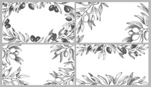 Engraved Olive Branches Frames. Black Olives On Branch With Leaves, Greek Spa Frame And Hand Drawn Sketch With Natural Products. Organic Plant With Foliage Vector Illustration Set.
