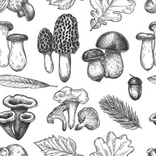 Leaves And Mushrooms Pattern. Hand Drawn Different Autumn Leaf, Berries And Mushrooms As Morel And Chanterelle, Bolete And King Trumpet Vintage Fall Season Sketch Seamless Vector Texture.