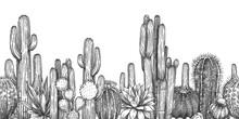 Hand Drawn Cactuses. Sketch Ca...