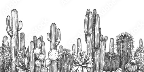 Hand drawn cactuses Canvas Print