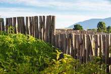 Backyard Wooden Fence With Morning Sun In New Mexico