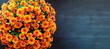 Large potted orange Chrysanthemums over a black background with room for text. Image shot from top view.