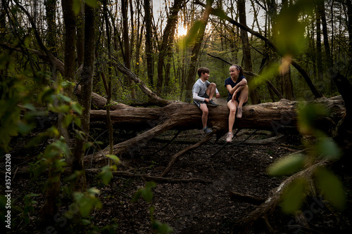 Full length of smiling siblings talking while sitting on fallen tree in forest - 357263208