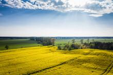 Germany, Brandenburg, Drone Vi...