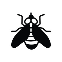 Black Solid Icon For Fly