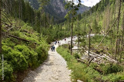 Obraz Turyści na szlakach w Tatrach, wakacje w górach - fototapety do salonu