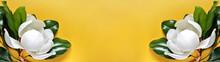Summer Yellow Banner Backgroun...