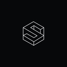 Professional Innovative 3D Initial S Logo And SS Logo. Letter S SS Minimal Elegant Monogram. Premium Business Artistic Alphabet Symbol And Sign