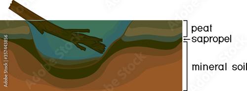 Obraz na plátně Sapropel and peat in nature