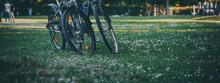 2 Fahrräder Stehen Im Gras Im...