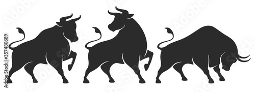 Bull set Canvas Print