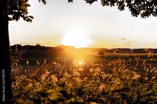 Fototapety, obrazy: Country Sonnenuntergang / Sonnenaufgang in Deutschland, Ackerbau, Landschaft