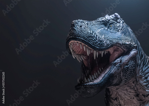 Fotografie, Obraz tyrannosaurus rex in the darkness