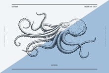 Hand-drawn Image Of An Octopus On A Light Background. Ocean Animal. Retro Picture For The Menu Of Fish Restaurants, Markets And Shops. Vector Illustration In Vintage Engraving Style.