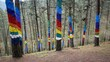 View of colorful painted tree trunks at Oma forest in Basque Country