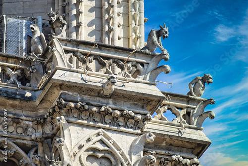 Gárgolas en Notre Dame , Paris Canvas Print