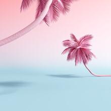 Pastel Pink Tropical Palm Tree