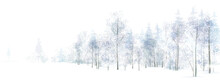 Vector Winter  Snowy Forest Isolated. Winter Landscape.