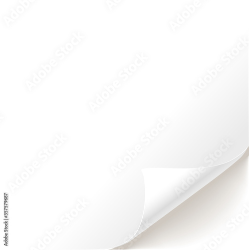 Obraz Blank white page curl background - fototapety do salonu