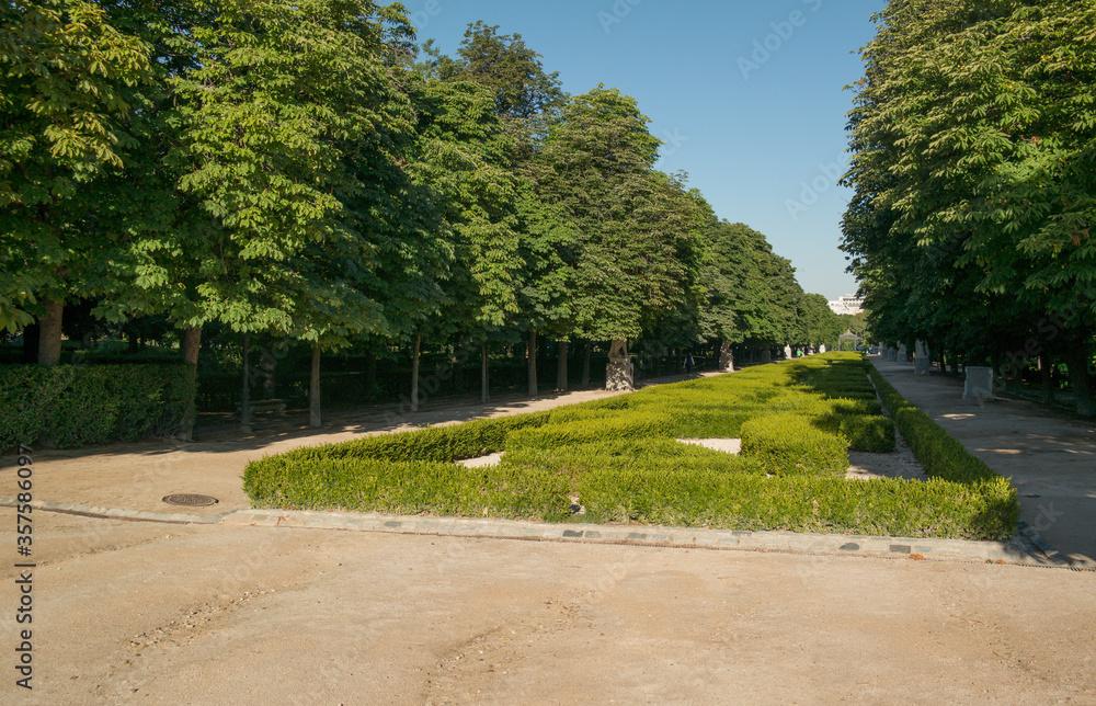 Fototapeta park zieleń drzewa liście niebo hiszpania