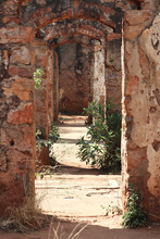 Fort Wonderboompoort Ruine Im Reservat Wonderboom