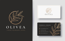 Olive Branch Hand Drawn Logo D...