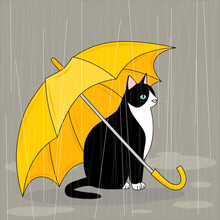Cat With A Yellow Umbrella In ...