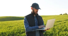 Caucasian Young Male Farmer In Hat Standing In Field And Typing On Keyboard Of Laptop Computer. Attractive Man Using Device In Margin In Summer And Browsing Online.