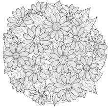 Flowers.Coloring Book Antistre...