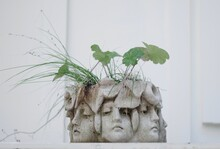 A Flowerpot Of Many Faces