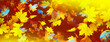 Leinwandbild Motiv Autumn background with bright colorful leaves.
