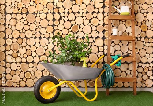 Fototapeta Set of gardening supplies near wooden wall
