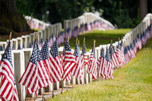 Military Headstones And US Flags In Cemetery