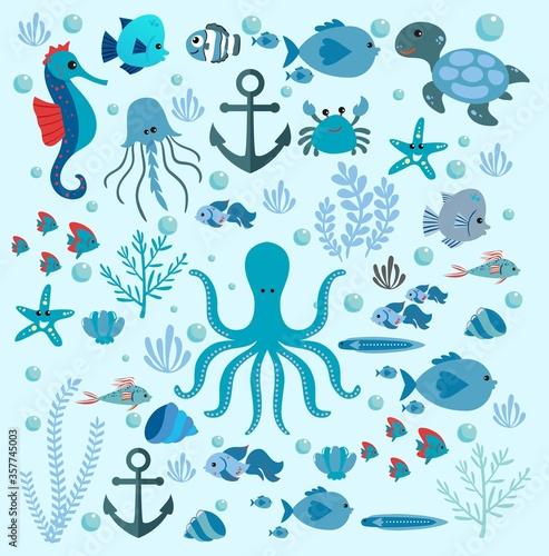 Fototapeta VARIETY OF SEA OCEAN CREATURES obraz